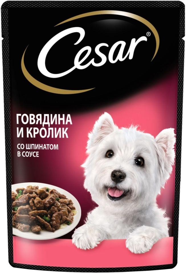 Отзывы о Корме для собак Cesar говядина и кролик со шпинатом в соусе 85г